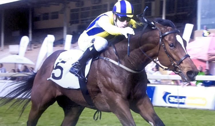 Van Halen takes Gr1 Gold Medallion 2