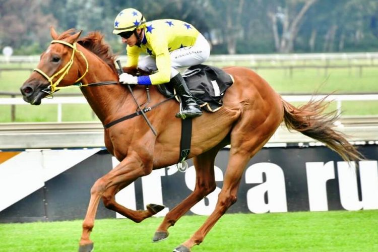Imperial Ruby wins at The Vaal