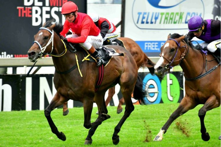 All Of Me wins for Spies Racing