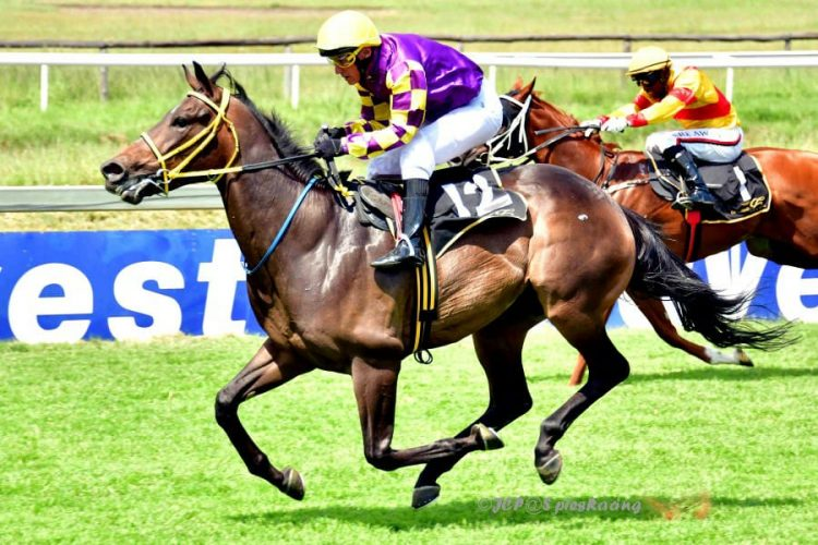 Roger the Dodger wins at The Vaal for Spies Racing