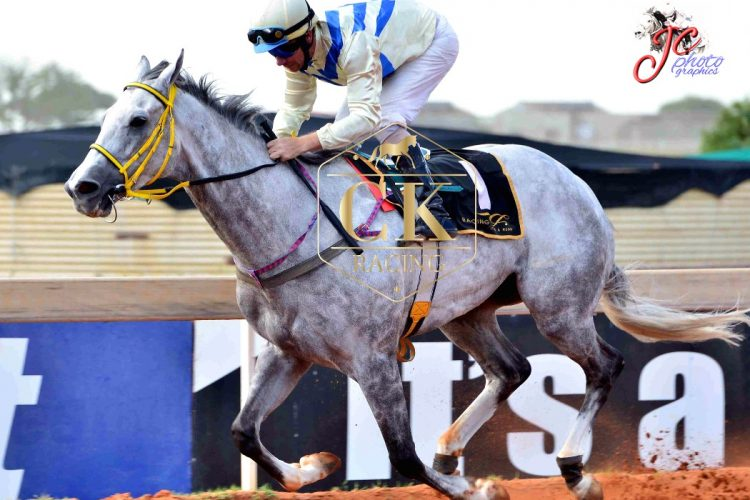 True Words makes it a treble for Spies Racing