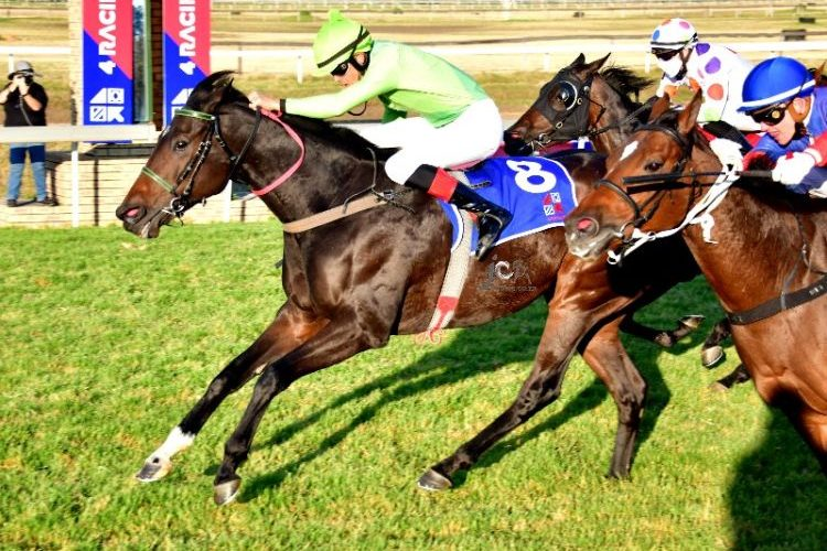 Singfonico wins at the Vaal (JC Photos).
